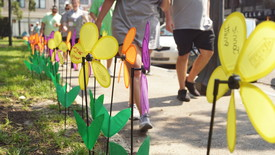 Walk to End Alzheimer's (photo: Avery Thayer)