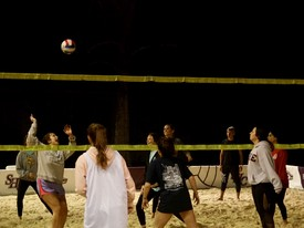 Delta Gamma and Tri Delta play in the TKE volleyball tournament to raise money for St. Jude's Children Research Hospital                             (photo: )